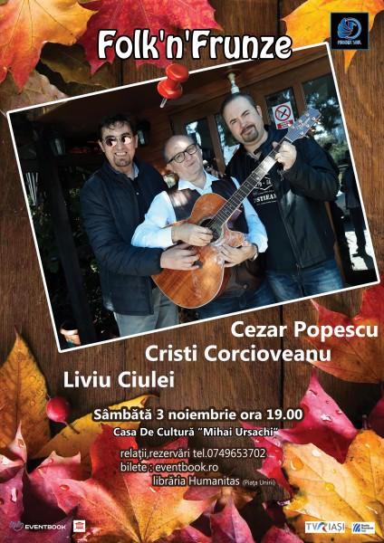 Folk'n'Frunze, Iași, S.3-Noi-18 (poster)